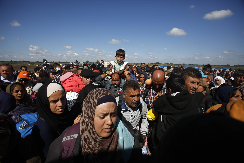 verhasste syrier in deutschland